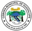 Câmara Municipal de Guadalupe aprova Projetos em Sessão Extraordinária  desta Segunda-Feira dia 11 de Maio 2020 feita por aplicativos
